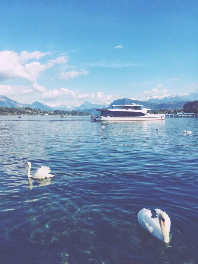 Luzern business trip